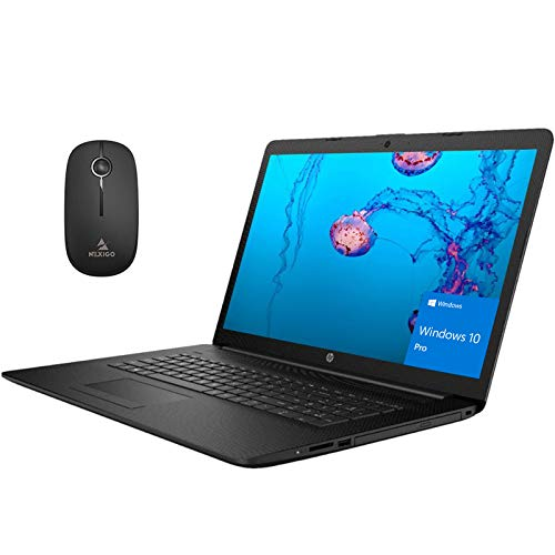 2020 Newest HP Pavilion 17.3 Inch Laptop (Intel Quad-Core i5-8265U up to 3.9 GHz, 16GB DDR4 RAM, 256GB SSD (Boot) + 1TB HDD, WiFi, Webcam, DVD, Windows 10 Pro) (Black) + NexiGo Wireless Mouse Bundle