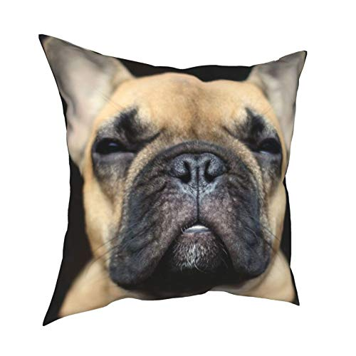 WAZHIJIA French Bulldog Decorative Throw Pillow Covers 18 X 18 Inch,Cute Dog Cushion Cover Square Pillow Cases for Car Sofa Home Decor