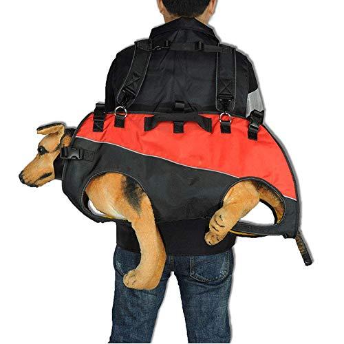 LIUJIE Gran Perro de Trabajo Mochila en el Aire Exterior portátil Cam