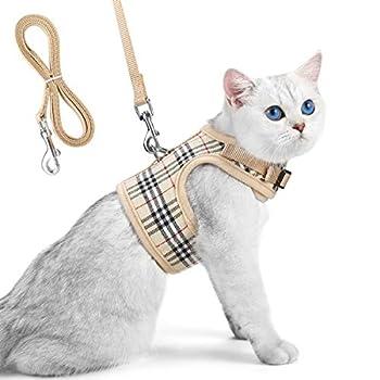 Harnais Pour Chat avec Laisse- Harnais en Maille Filet Souple réglable pour chat Domestique Marche(S)