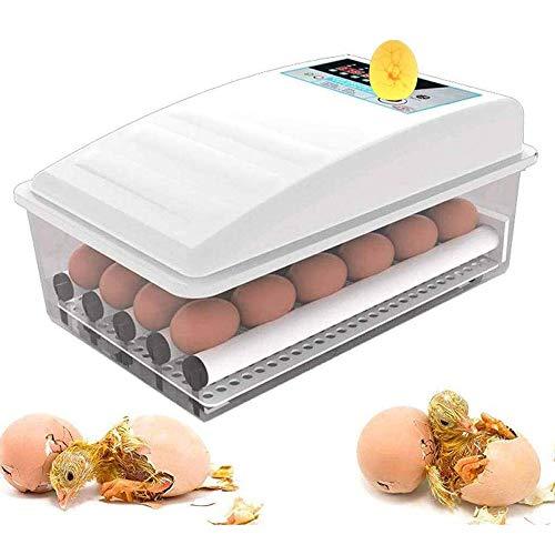 ZIHAOI Incubatrice Automatica di Uova, Incubatrice Uova Gallina Professionale con Display LCD e Controllo Automatico di Temperatura, Egg Incubator Ideale per Gallina, Anatra, Quaglia, ECC,12Eggs