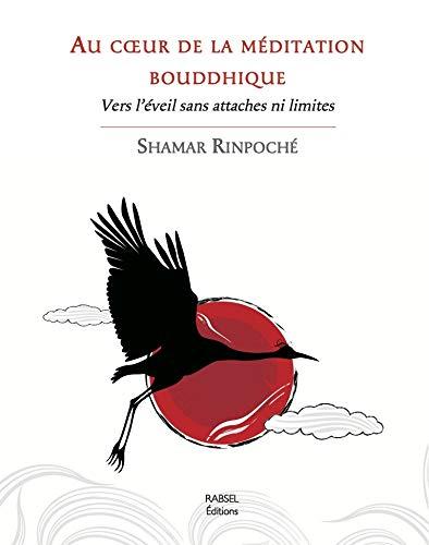 Au coeur de la méditation bouddhique : Vers l'éveil sans attaches ni limites