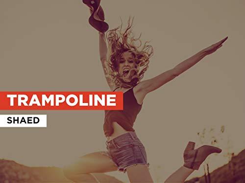 Trampoline im Stil von SHAED