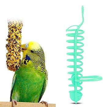Redxiao Mangeoire pour perroquets, Fournitures pour Oiseaux pour Animaux de Compagnie Panier Creux mangeoire pour Oiseaux mangeoire pour Perche, pour Perruche Cockatiel pour Oiseau en Cage(Green)