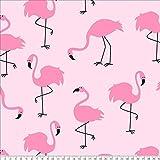 Flamingos Anti-Pill Fleece Fabric by The Yard