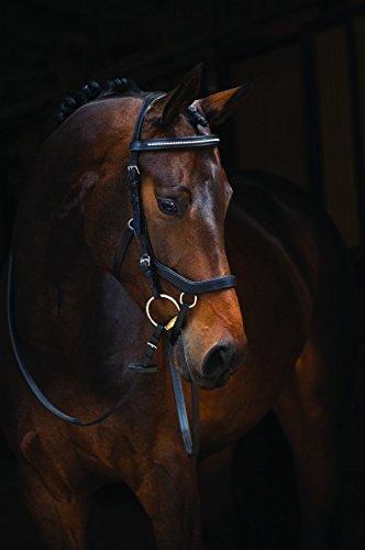 Horseware Rambo Micklem Diamante Competition Bridle Trense schwarz wählbare Größe (Standard Horse)
