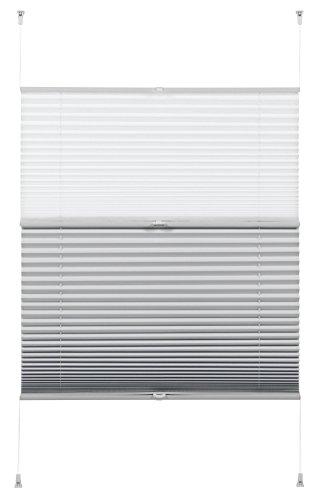 GARDINIA Plissee zum Klemmen, Ideal für Tag und Nacht, Alle Montage-Teile inklusive, EASYFIX Plissee Day + Night, Weiß, 100 x 130 cm (BxH)