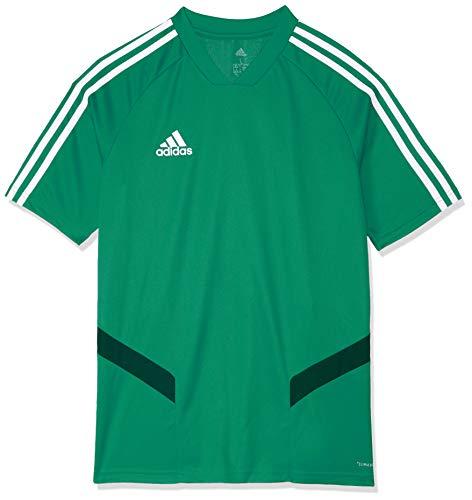 adidas Kinder TIRO19 TR JSYY T-Shirt, Bold Green/White, 7-8A