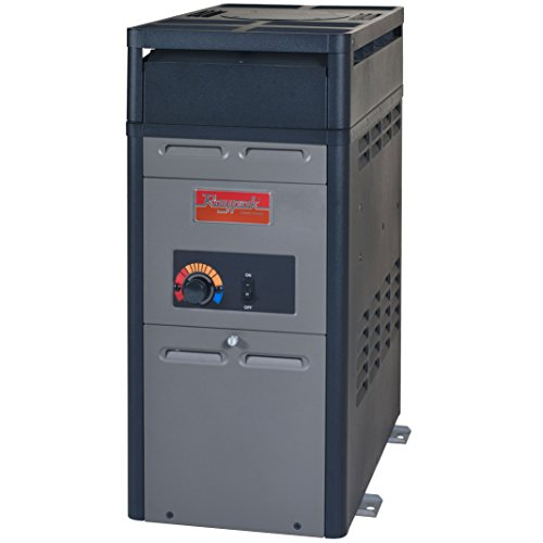 Raypak Natural Gas Pool and Spa Heater – 105,000 BTU