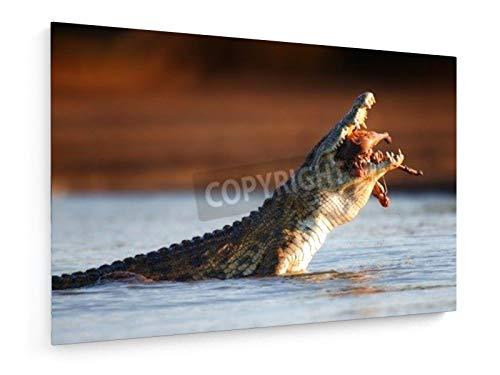 weewado Jacoba Susanna Maria Swanepoel - Cocodrilo del Nilo (Crocodylus niloticus) tragar un Impala 60x40 cm Impresion en Lienzo - Muro de Arte - Canvas, Cuadro, Poster - Animals