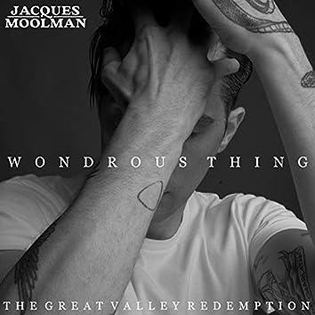 Wondrous Thing