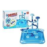FEYV Maze Ball Roll Toys, Marble Run Race Track Race Run Maze Ball Track Bolas De Laberinto Pista De Juego De Agua para Juguetes Educativos