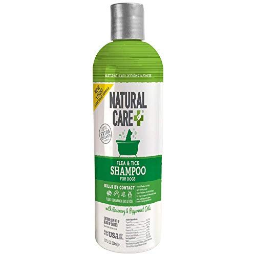 Natural Care Flea and Tick Dog Shampoo   Flea Treatment for Dogs   Flea Killer with Certified Natural Oils   12 Ounces