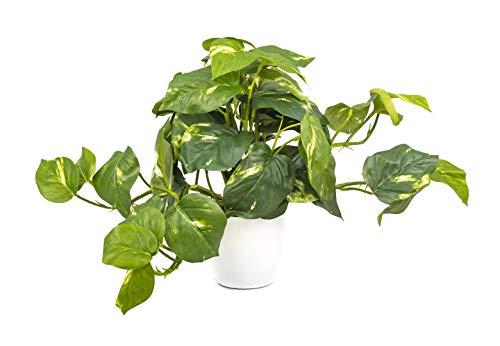 artfleur - künstlicher Pothos im Topf 25cm Kunstpflanze Grünpflanze