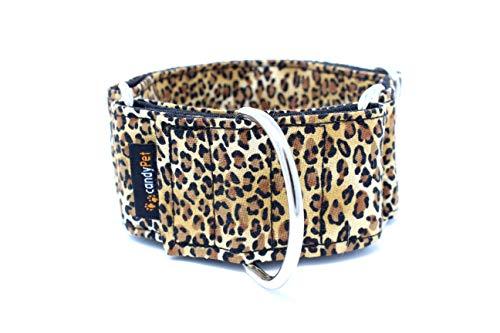 candyPet - Collare Martingala per Cani, Modello Leopardo