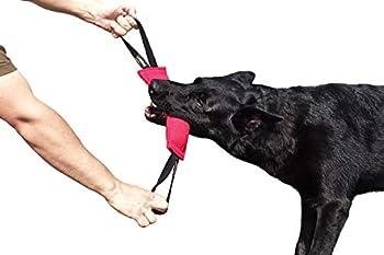 Dingo Gear K9 IGP IPO Obiedence Boudin de dentition en coton et nylon pour dressage de chien (28 x 7 cm, 2 poignées, rose)