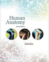 By Kenneth S. Saladin - Human Anatomy: 2nd (second) Edition