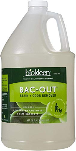 Biokleen BacOut Enzyme Stain and Odor Remover  128 Ounce  Destroys Stains amp Odors Safely for Pet Stains Laundry Diapers Wine Carpets More EcoFriendly NonToxic PlantBased