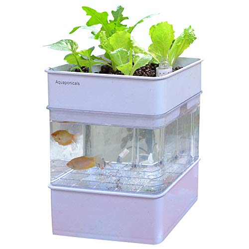 WAWLIVING Water Garden Fish Tank Aquaponic Ecosystem Self-Cleaning Hydroponic Plants Growing System 4 Gal