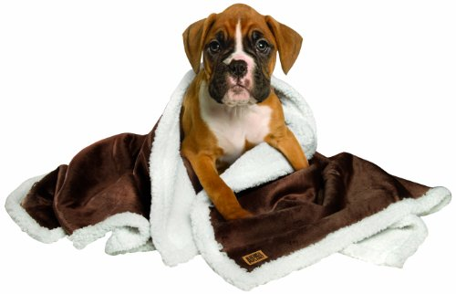 Animal Planet Sherpa Pet Blanket, Brown