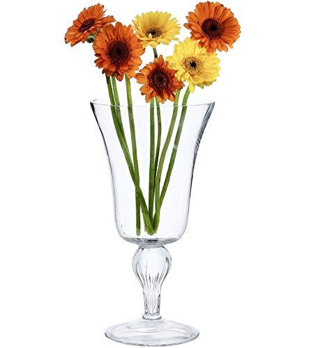 Solavia Verre Clair Hurricane Bougie Lanterne Support 33 x 17 cm | Bell Pot à orchidée