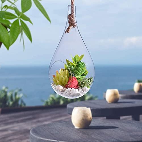 Globo de gota de vidrio sostenido por cuerda grande lágrima terrario macetas colgantes de vidrio para plantas de aire, suculentas decoración interior para dormitorio/baño