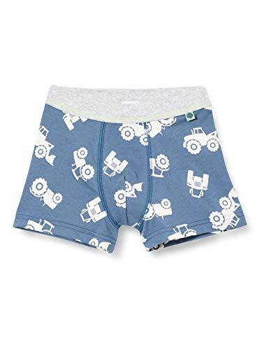 Sanetta Jungen Shorts blau Boxershorts, Bering sea, 140