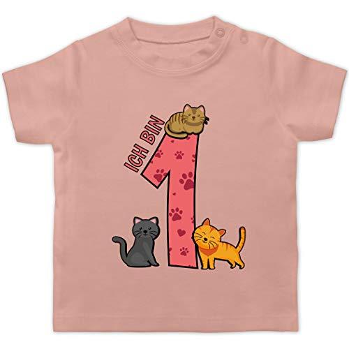 Geburtstag Baby - 1. Geburtstag Katzen - 3/6 Monate - Babyrosa - zum 1 Geburtstag t Shirt - BZ02 - Baby T-Shirt Kurzarm