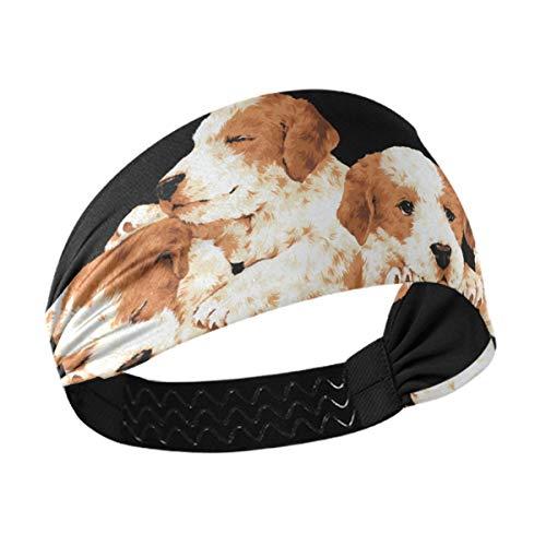 Diadema deportiva para mujer – Bonitos perros cachorros unisex para entrenamiento para hombres que absorbe la humedad banda para el pelo para gimnasio, yoga, trotar, correr