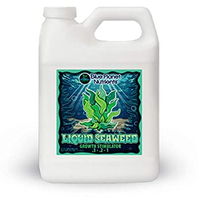 Liquid Seaweed for Plants (32 oz) Quart | Concentrated Liquid Kelp Supplement from Blue Planet Nutrients | Hydroponic Aeroponic Soil Coco Coir | for All Plants & Gardens