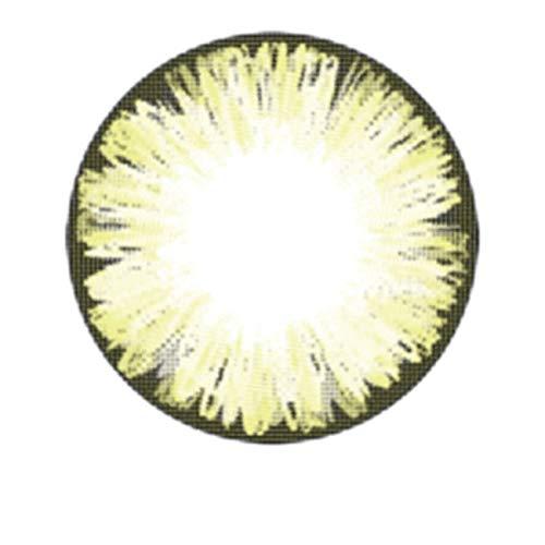 Matlens – EOS Farbige Kontaktlinsen mit Stärke circle lenses braun brown ICE II 2 Linsen 1 Kontaktlinsenbehälter 1 Pflegemittel 50ml