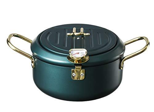 Deep Fryer, Temperature Control Tempura Chip Pan fine ironJapanese Fryer Cooking Pot for Chicken Legs, Dried Fish, Tempura 2.6Lfilter network (Dark green Fryer)