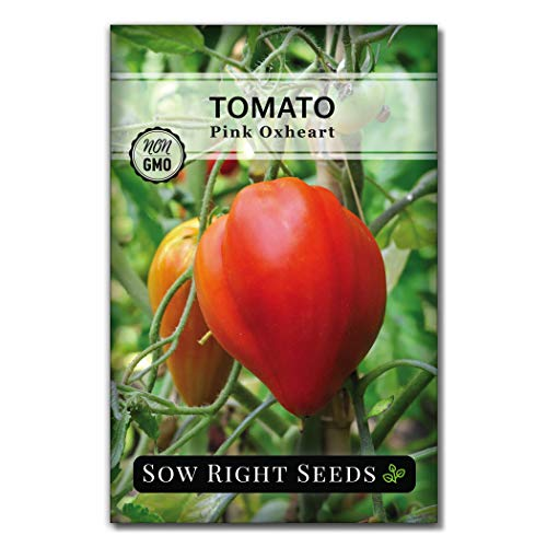 Sow Right Seeds - Pink Oxheart Tomato Seed for Planting - Non-GMO Heirloom Packet with Instructions to Plant a Home Vegetable Garden