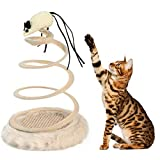 VICTORIE Katzenspielzeug Katzenspirale Kratzspielzeug Spielzeugmaus Fangen Training Interaktiv mit Feder