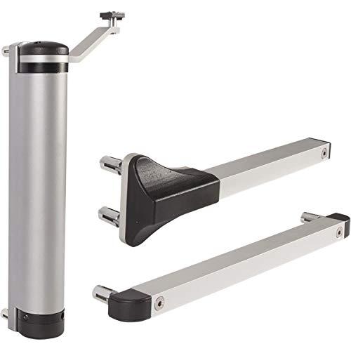 LOCINOX ZILV Türschließer Lion, für Türen bis zu 75 kg, Aluminium silberfärbig, Silber