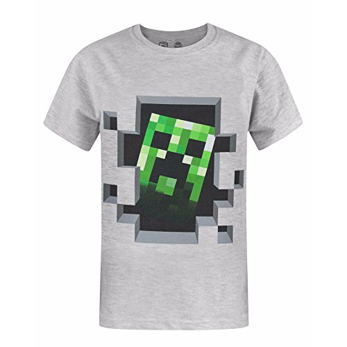 Fashion UK Official Brand Minecraft Creeper Inside Boy's T-Shirt (9-10 years)
