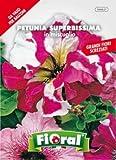 Sementi da fiore di qualità in bustina per uso amatoriale (PETUNIA SUPERBISSIMA IN MISCUGLIO)