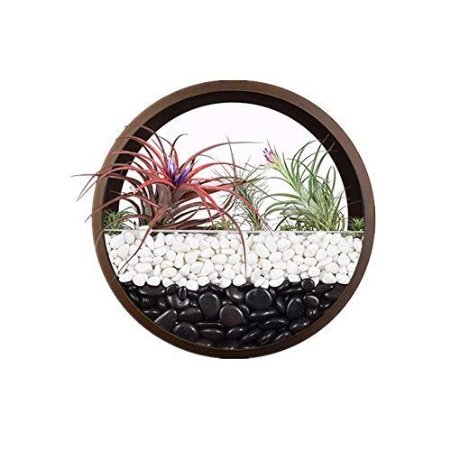 Macetero de pared de cristal redondo marrón de 25,4 cm, maceta de metal de hierro para colgar en la pared, decoración de pared, contenedor vertical interior para flores de cactus suculentas