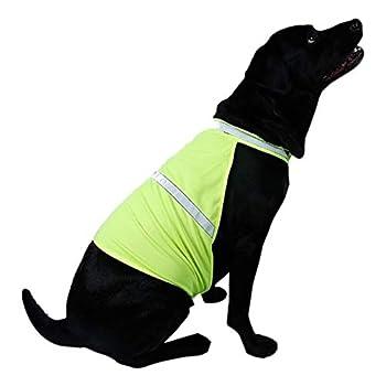 HYDKU Gilets de sécurité Chien Gilet réfléchissant de sécurité Fluorescent sécurité Manteau for Chien Manteau for Chien Costum Sécurité Luminous Vêtements for Animaux imperméable à l'eau