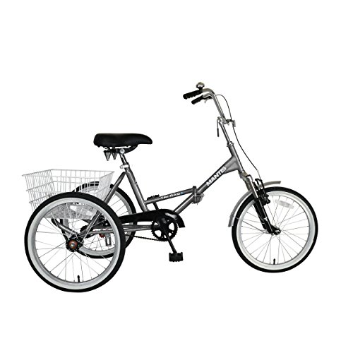 Tri-Rad 20 Inch Wheels Single Speed Adult Folding Tricycle, Silver