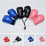 URFEDA Mini Guante de Boxeo para Coche,Autografiada Gadget Boxeo Llavero Boxeo Mini Mike Tyson Unisex Adulto para el Interior de los Accesorios del hogar del Club de fútbol del Coche