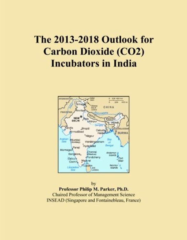 電気的世界記録のギネスブック銀行The 2013-2018 Outlook for Carbon Dioxide (CO2) Incubators in India