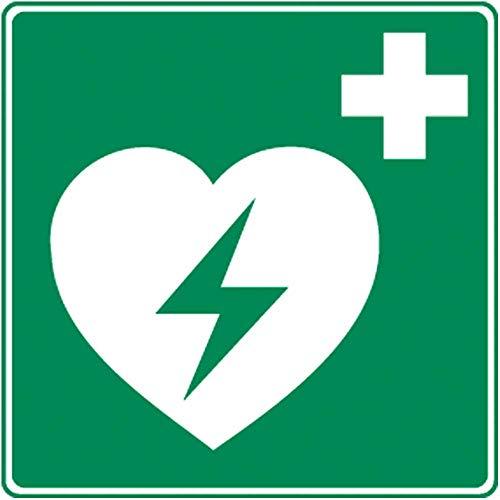 Holthaus Medical Rettungszeichen Defibrillator Schild Hinweis Tafel, nachleuchtend, 20x20cm
