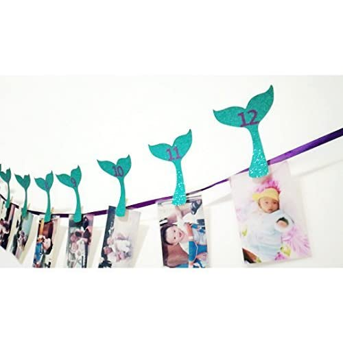 Mermaid Photo Banner Sweet Heart First Birthday Justborn To 12 Months