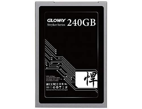 """Gloway STK 2.5"""" SSD SATA III Internal Solid State Drive (SSD) 6Gb/s 2.5""""/7mm (240GB)"""