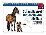 Schaubilderset Hirudopunktur für Tiere - Deutsche Ausgabe: Vorschläge zum Setzen von Blutegeln auf Akupunkturpunkte - Susanne Dr. med. vet. Hauswirth