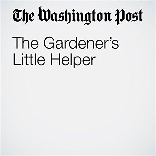 The Gardener's Little Helper copertina