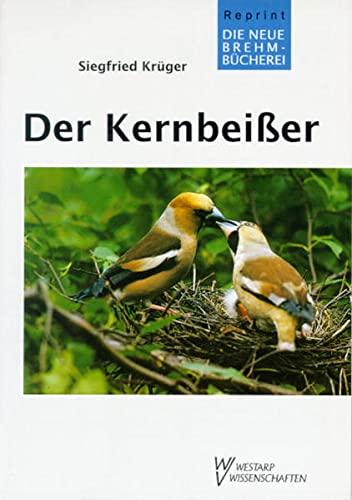 KERNBEIßER COCCOTHRAUSTES COCCOTHRAUSTE: Coccothraustes coccothraustes