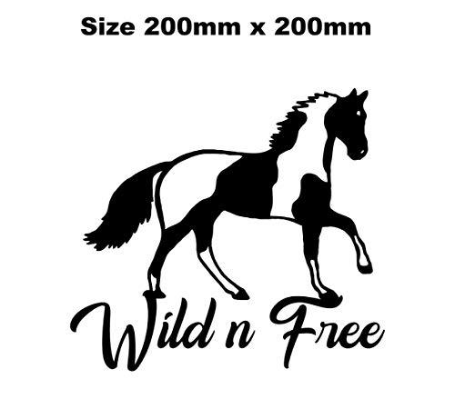 myrockshirt Schönes Pferd mit Schriftzug wild n Free 20x20cm reiten Reitsport Aufkleber Autoaufkleber Profi-Qualität ohne Hintergrund Sticker UV&waschanlagenfest