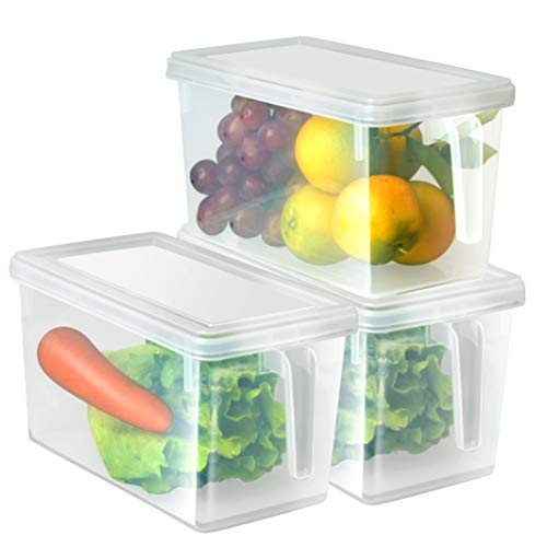 HapiLeap Organizador de Alimentos para Cocina/Congelador, contenedor Transparente con Tapa y Asa (3 Pack)